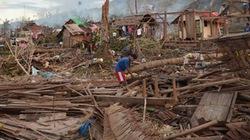 Philippines: Nông nghiệp điêu tàn sau bão Haiyan