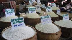 IMF kêu gọi ngừng trợ cấp giá gạo cho nông dân Thái Lan