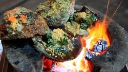 Thưởng thức 5 món sò ngon khó cưỡng ở Phú Yên