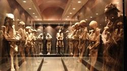 Kinh hoàng bảo tàng xác ướp kỳ dị nhất thế giới