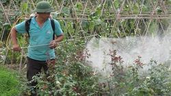 Nông dân bị thuốc bảo vệ thực vật đe dọa