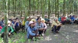 Bộ Công an kết luận điều tra vụ chiếm đoạt 500ha cao su ở Bình Phước