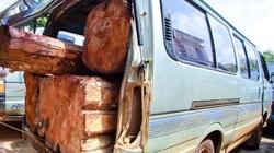 Gia Lai: Bắt giữ xe khách chở lậu gần 3 khối gỗ quý