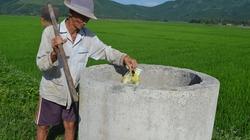 Bình Định: Đặt ống chứa chất thải,  vỏ bao bì trên các cánh đồng