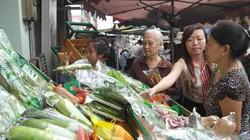 """Rau VietGAP """"tiến quân"""" vào chợ TP.HCM"""