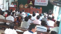 Bình Định: Tuyên truyền tham gia bảo hiểm chăn nuôi