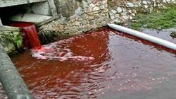 Rợn người dòng sông ngập máu sau một đêm