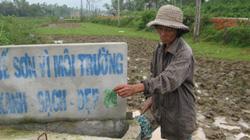 Xã Quế Long (Quế Sơn):  Quê nghèo đã khởi sắc