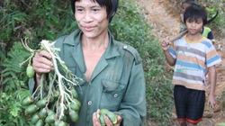 """Bất ngờ chuyện """"người rừng"""" Hồ Văn Lang thích có vợ"""