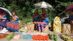 Chợ hội Sín Chéng