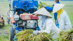 Agribank: Dư nợ cho vay lĩnh vực tam nông tăng 15,4%