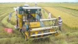 Phú Yên cần đầu tư sâu rộng cho tam nông