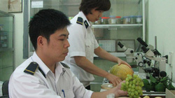 Phát hiện nhiều loại thực phẩm nhiễm chất cấm