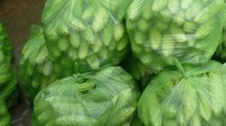 Bình Định: 85 mẫu rau quả có dư lượng thuốc BVTV lớn