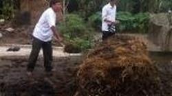 Quảng Trị: Dạy kỹ thuật ủ phân hữu cơ vi sinh