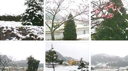 Tuyết Sapa phủ trắng xóa... Facebook
