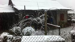Tuyết rơi ở Sapa: Khách hồ hởi, dân tê tái