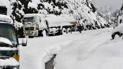 Quốc lộ 4D tắc nghẽn vì tuyết dày tới nửa mét