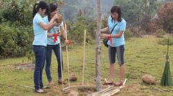 Bắc Ninh: Công ty Canon hỗ trợ làm sạch môi trường
