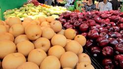 Hà Lan hỗ trợ Việt Nam xuất khẩu nông sản