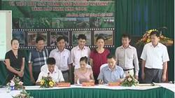 Bắc Ninh: Hỗ trợ tiêu thụ nông sản hàng hóa