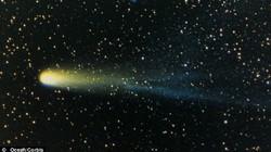 SỐC: Sao chổi Halley từng gây ra bệnh dịch kinh hoàng