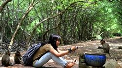 Khỉ … săn du khách