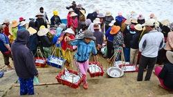 Ngư dân Bình Định trúng đậm nhờ cá hố