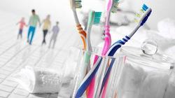 Bàn chải đánh răng là ổ chứa vi khuẩn lớn