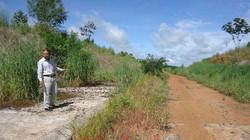 Dự án Khu công nghiệp cửa khẩu Quốc tế Lệ Thanh (Gia Lai): Chi 28 tỷ đồng cho… cỏ mọc