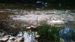 TP.Đà Lạt: Nguồn nước sinh hoạt bị ô nhiễm nghiêm trọng