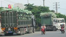 Sẽ dừng hoạt động cảng biển để xe chở quá tải
