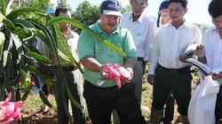 Quảng Ngãi xây dựng nông thôn mới bền vững
