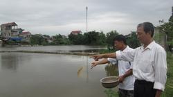 Quỹ Hội giúp người nuôi cá liên kết làm ăn