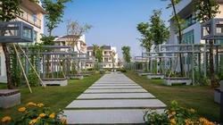 """Vì sao đại gia Việt chuyển hướng săn mua căn hộ """"xanh""""?"""