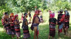 Thừa Thiên-Huế: Phục dựng điệu múa của người Tà Ôi