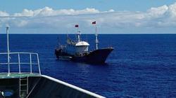 Cảnh sát biển Nhật rượt đuổi tàu cá Trung Quốc, bắt thuyền trưởng