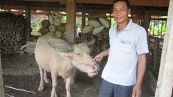 Dân bản Chai Chanh đồng lòng giữ rừng