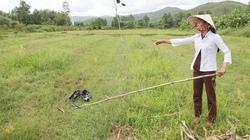 Vụ heo rừng cắn chết người ở Quảng Ngãi: Tình người giữa lằn ranh sinh tử