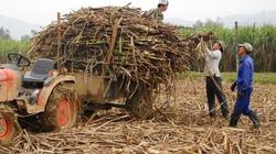 """Cơ chế nhập khẩu đường """"không minh bạch"""": Bộ Công Thương phải giải trình"""