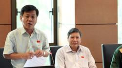 Quốc hội thảo luận tổ về dự án sân bay Long Thành: Nên để sau năm 2020 hãy làm