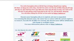 Đội lốt trang thông tin điện tử, 7 website bị dừng hoạt động