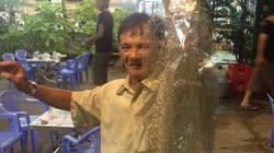 """KINH HOÀNG: """"Cơn mưa"""" rầy nâu tấn công người dân miền Tây"""