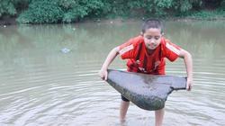 """Chuyện lạ ở làng: Khúc gỗ hình con rùa bơi """"ngược dòng"""" trên sông Tích"""