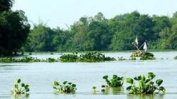 Vĩnh Long: Bà lão may mắn thoát chết sau 5 ngày trôi trên sông