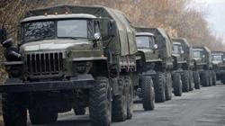 OSCE phát hiện xe chở thi thể binh sĩ thiệt mạng tại Ukraine về Nga