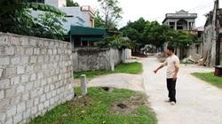 Thanh Hóa: Dân hoang mang vì rắn lục đuôi đỏ nhiều bất thường