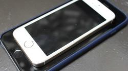 Vì sao iPhone 6 Plus đáng mua hơn iPhone 6?