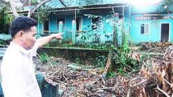 Nữ đại gia chi cả chục tỷ đồng xây biệt thự cho vật nuôi ở Lâm Đồng