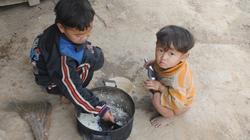 Những đứa trẻ bị đánh cắp tuổi thơ